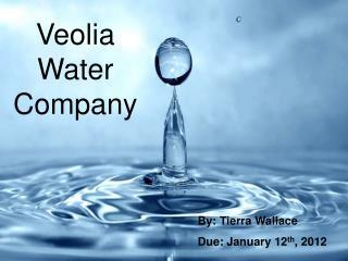 Veolia Water Company