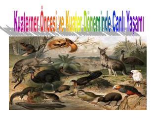 Kuaterner Öncesi ve Kuater Döneminde Canlı Yaşamı