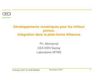 Développements numériques pour les milieux poreux,  Intégration dans la plate-forme Alliances