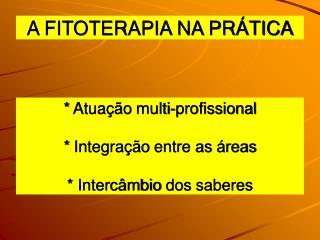 *  Atuação  multi- profissional *  Integração  entre as  áreas *  Intercâmbio  dos  saberes