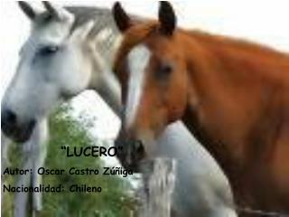 """""""LUCERO"""" Autor: Oscar Castro Zúñiga Nacionalidad: Chileno"""