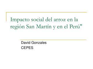 """Impacto social del arroz en la región San Martín y en el Perú"""""""