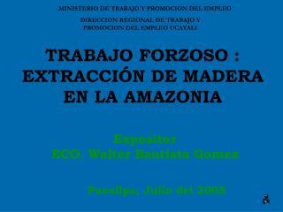 TRABAJO FORZOSO :  EXTRACCIÓN DE MADERA EN LA AMAZONIA