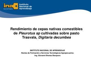 INSTITUTO NACIONAL DE APRENDIZAJE Núcleo de Formación y Servicios Tecnológicos Agropecuarios