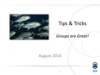 Tips & Tricks Groups are Great!