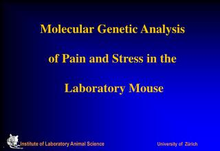 Molecular Genetic Analysis  of Pain and Stress in the  Laboratory Mouse