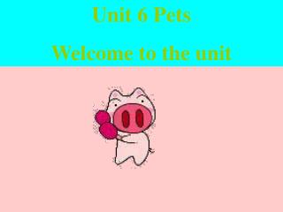 Unit 6 Pets Welcome to the unit