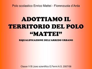 """Polo scolastico Enrico Mattei - Fiorenzuola d'Arda ADOTTIAMO IL TERRITORIO DEL POLO """"MATTEI"""""""