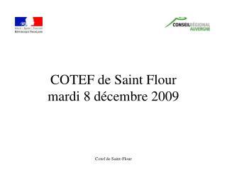 COTEF de Saint Flour mardi 8 décembre 2009