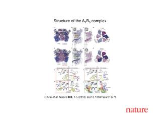 S Arai  et al.  Nature 000 ,  1-5  (2013) doi:10.1038/nature11778