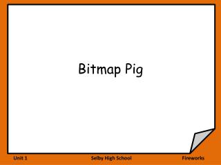 Bitmap Pig