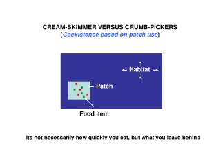 CREAM-SKIMMER VERSUS CRUMB-PICKERS Coexistence based on patch use