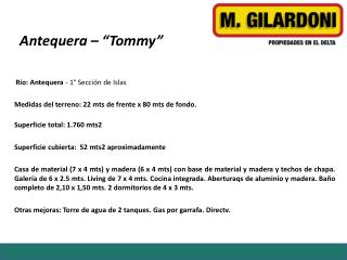 "Antequera  – ""Tommy"""