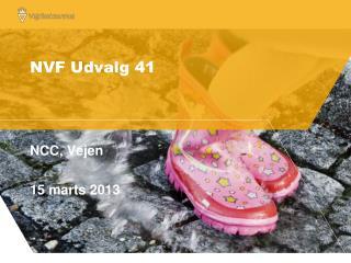 NVF Udvalg 41