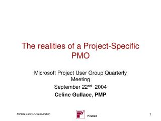 The realities of a Project-Specific PMO