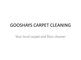 GOOSHAYS CARPET CLEANING