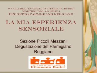 Sezione Piccoli Mezzani Degustazione del Parmigiano Reggiano