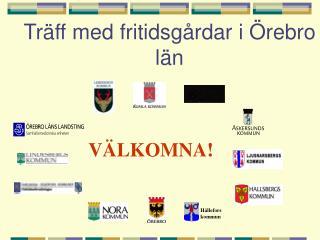 Träff med fritidsgårdar i Örebro län