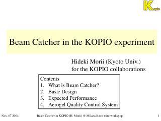 Beam Catcher in the KOPIO experiment