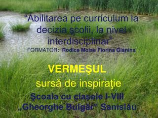 """VERME ŞUL  sursă de inspiraţie Şcoala cu clasele I-VIII """"Gheorghe Bulgăr"""" Sanislău"""