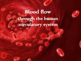 Blood flow through the human  circulatory system