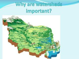 Why are watersheds important?