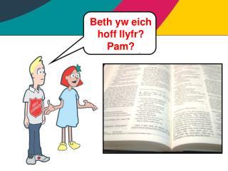 Beth yw eich hoff llyfr? Pam?
