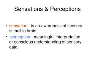 Sensations & Perceptions