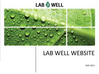 LAB WELL WEBSITE NOV 2011
