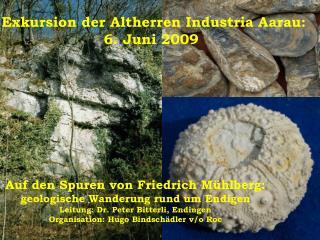 Auf den Spuren von Friedrich Mühlberg: geologische Wanderung rund um Endigen
