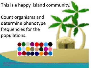 This is a happy  island community.