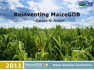 Reinventing MaizeGDB