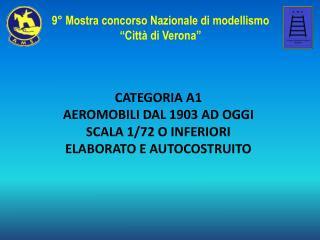 CATEGORIA A1  AEROMOBILI DAL 1903 AD OGGI SCALA 1/72 O INFERIORI ELABORATO E AUTOCOSTRUITO