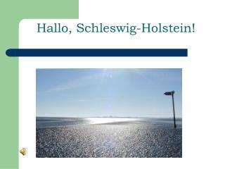Hallo, Schleswig-Holstein!