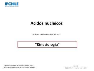 Acidos nucleícos Professor: Verónica Pantoja . Lic. MSP.
