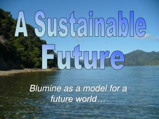 Blumine as a model for a future world…
