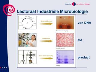 Lectoraat Industri�le Microbiologie