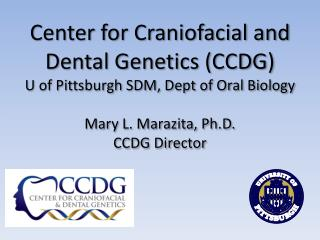 Center for Craniofacial and Dental Genetics (CCDG) U of Pittsburgh SDM,  Dept  of Oral Biology