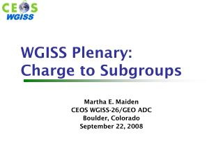WGISS Plenary: Charge to Subgroups