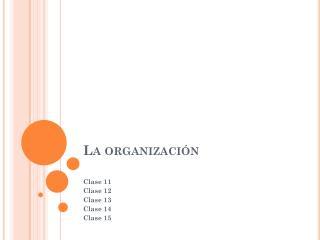 La organizaci�n
