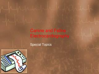 Canine and Feline Electrocardiography