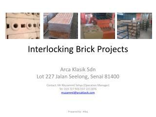 Interlocking Brick Projects
