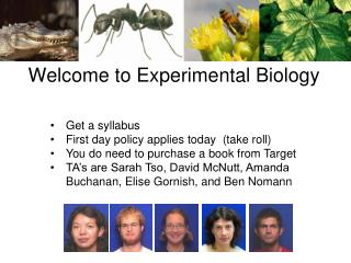 Welcome to Experimental Biology