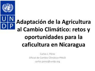 Carlos J. Pérez Oficial  de  Cambio Climático - PNUD c arlos.perez@undp