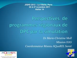 Perspectives  de programmes régionaux de DPC par la simulation