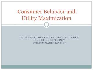 Consumer Behavior and  Utility Maximization