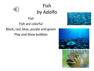 Fish  by  Adolfo