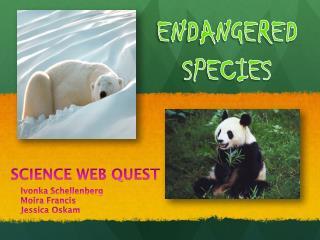 SCIENCE WEB QUEST