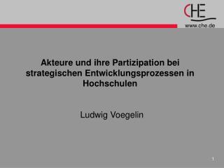 Akteure und ihre Partizipation bei strategischen Entwicklungsprozessen in Hochschulen