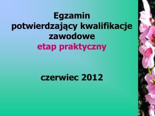 Egzamin  potwierdzający kwalifikacje zawodowe etap praktyczny czerwiec 2012